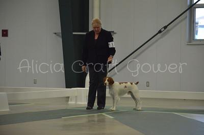 Helena Dog Show235
