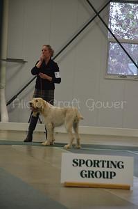 Helena Dog Show229