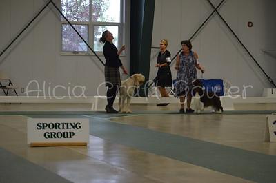 Helena Dog Show224