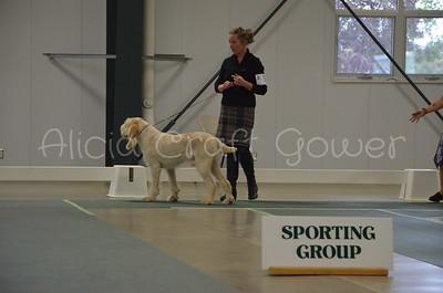 Helena Dog Show227