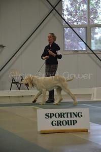 Helena Dog Show226