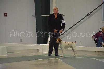 Helena Dog Show232