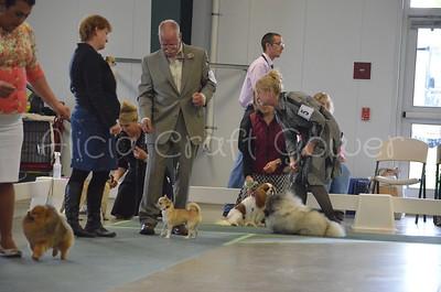 Helena Dog Show163