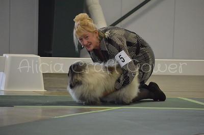 Helena Dog Show140