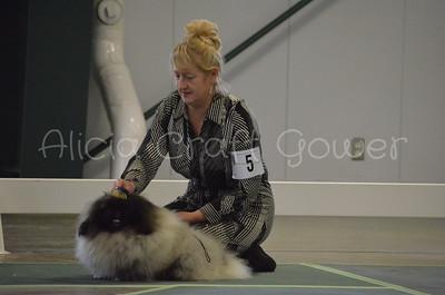 Helena Dog Show141