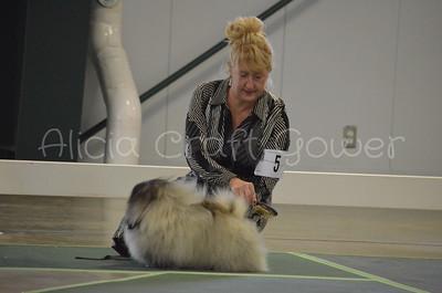 Helena Dog Show136