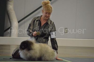 Helena Dog Show135