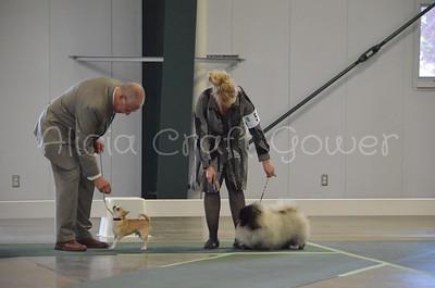 Helena Dog Show134