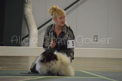 Helena Dog Show138