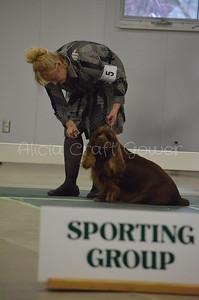 Helena Dog Show217
