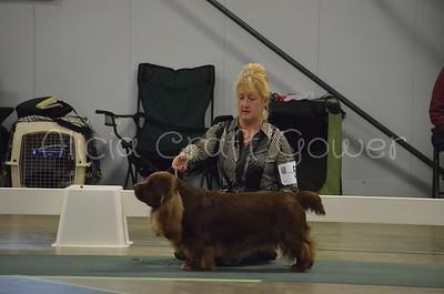 Helena Dog Show245