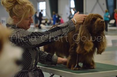 Helena Dog Show250