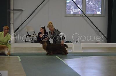 Helena Dog Show205