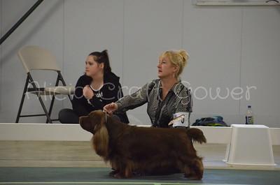 Helena Dog Show207