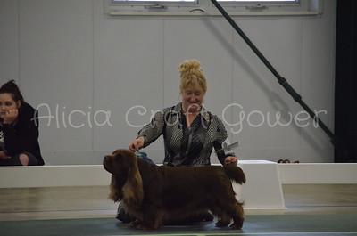 Helena Dog Show213