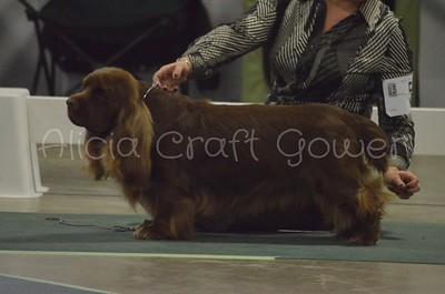 Helena Dog Show242