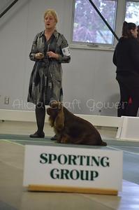 Helena Dog Show219