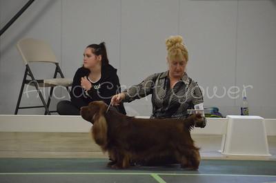 Helena Dog Show206