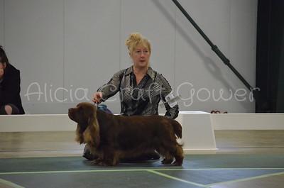 Helena Dog Show211