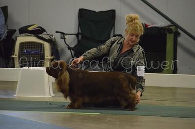Helena Dog Show241