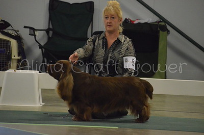 Helena Dog Show244