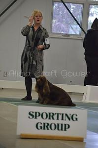 Helena Dog Show218