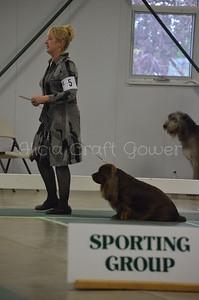 Helena Dog Show220