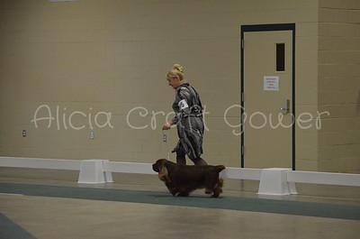 Helena Dog Show204
