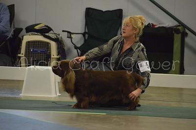 Helena Dog Show240