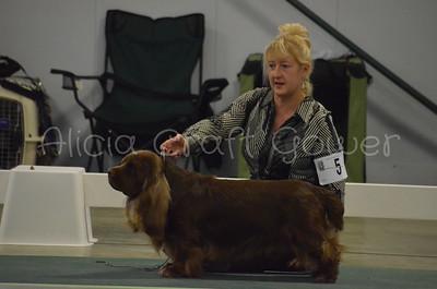 Helena Dog Show243