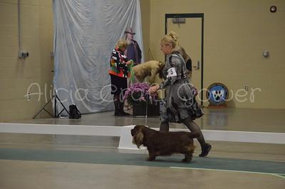 Helena Dog Show203