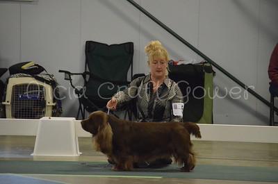 Helena Dog Show246