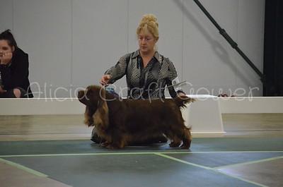Helena Dog Show212