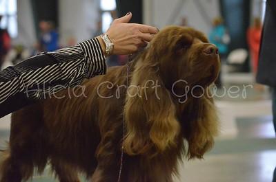 Helena Dog Show249