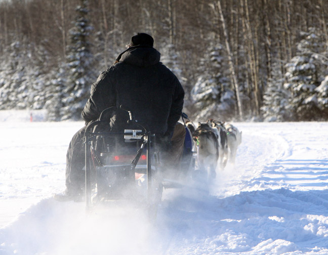 Dan came out to rescue a musher and help him bring his team back home via snow machine.