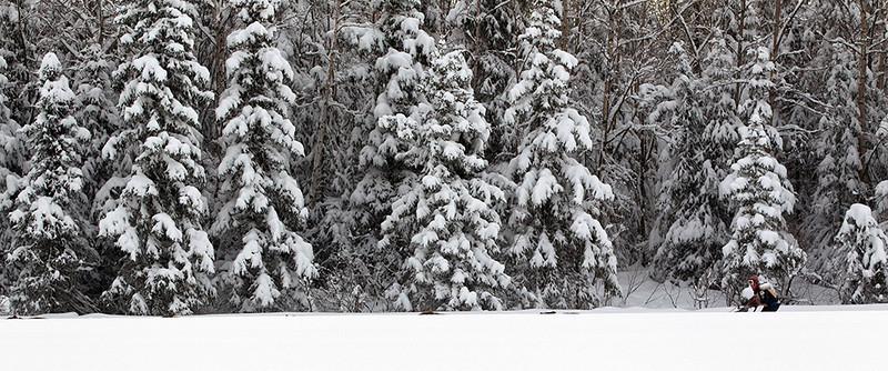 IMG_3054  Jennifer Probert in the deep snow.