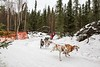 """IMG_2711  The """"U Turn!""""  In order to give the Open Class mushers the miles they needed on good trails, CDMA came up with a plan to send them back around on the U Turn shortly before the finish line.  :)"""