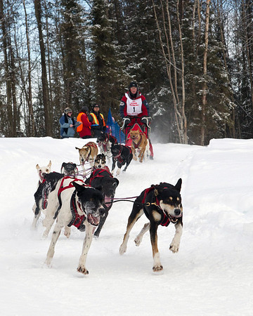 DOG MUSHING - Sled Dog Racing