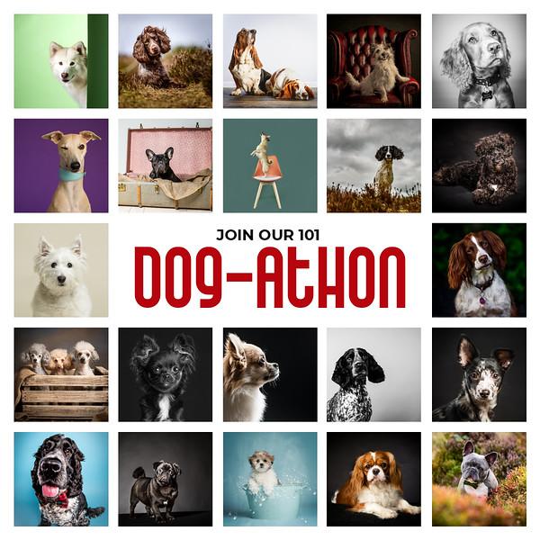 Dog-Athon