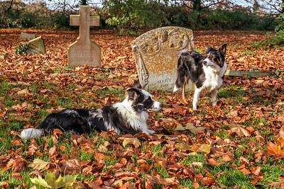 Gael with Cassie In The St Wendreda Cemetery