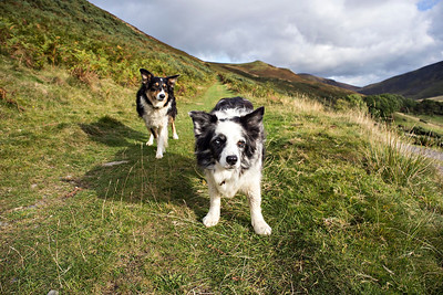 Cassie & Bess En Route To Great Calva