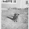 Spook Medaris & Louis R. Dog (Ernie Clark's dog) 1974 or 1975