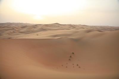In der Wüste im Emirat Abu DhabiIn the desert of the emirate Abu Dhabi(c) Hendrik Bohle