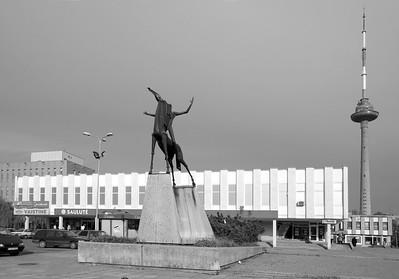 Wohnbezirk LazdynaiFoto © Raimondas Urbakavičius