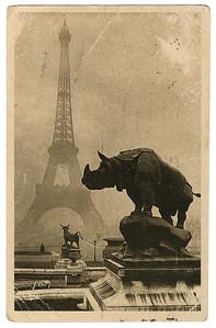 »Da ist der Eiffelturm – ein reines freies Monument der Technik in sportlichem Geiste …«. – Die abgebildete Karte schickte Benjamin am 25. März 1926 an Siegfried Kracauer. Sie zeigt neben dem Eiffelturm ein gusseisernes Nashorn, das der Bildhauer Henri Alfred Jacquemart für die Pariser Weltausstellung von 1878 schuf. Ursprünglich stand es zusammen mit drei weiteren Tierskulpturen (Pferd, Stier und Elefant) um die Brunnen vor dem Palais du Trocadéro; heute befindet es sich auf dem Platz vor dem Musée d'Orsay. Bild: Archiv Detlev Schöttker