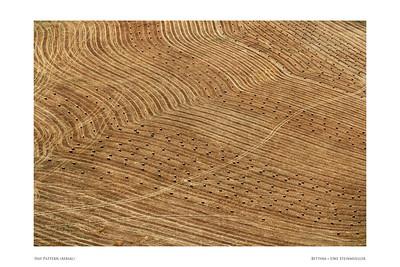 Hay Pattern (Aerial)