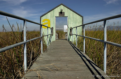 Gate to abandoned Harbor (Alviso)