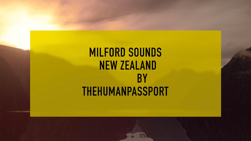 The Human Passport Visits Milford Sounds