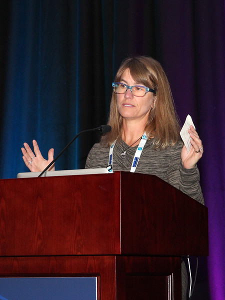 Nancy Chanover introducing the Professional Culture & Climate Subcommitee speaker, William Smith (University of Utah).<br /> <br /> Credit: Rick Fienberg<br /> 18 Oct 2017<br /> DPS49 Provo