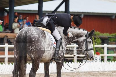 EMV2014_seeniorid_KS_0202